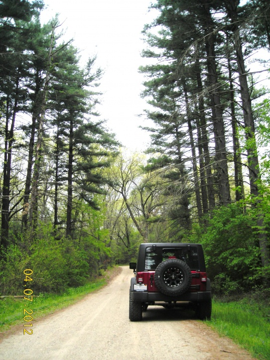 Click image for larger version  Name:2012 Jeep Wrangler at Sandridge State Forest.jpg Views:505 Size:234.7 KB ID:112383