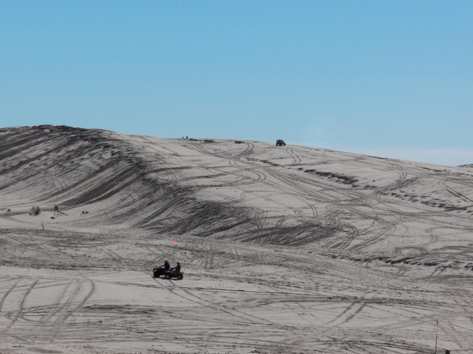 Click image for larger version  Name:Dune.jpg Views:120 Size:82.7 KB ID:187857