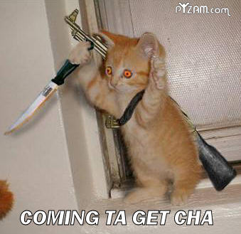 Name:  funny+cat+pictures+with+guns+%2827%29.jpg