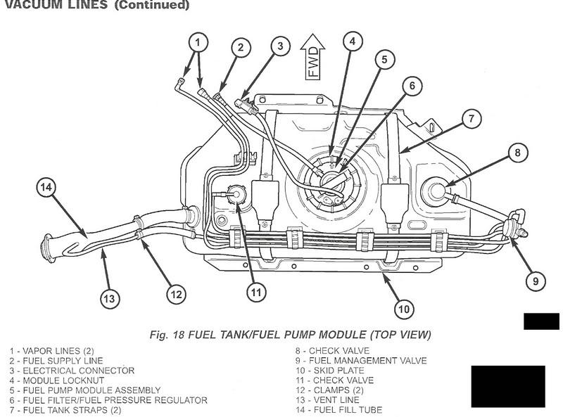 2007 Jeep Wrangler Gas Tank Diagram Wiring Diagram Belt Dicover C Belt Dicover C Consorziofiuggiturismo It