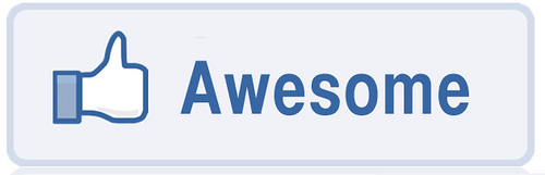 Click image for larger version  Name:How-To-Facebook-Like-Your-Google-Search awesome.jpg Views:6 Size:41.5 KB ID:4004498