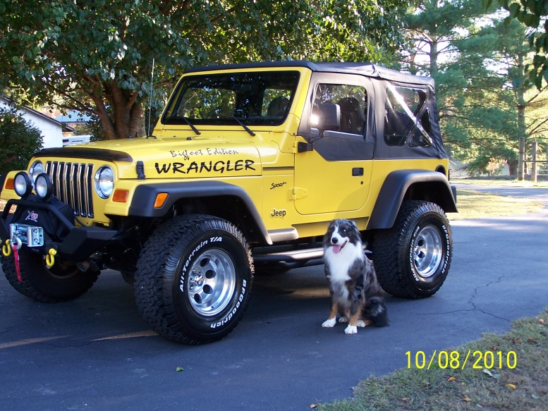 Click image for larger version  Name:jeep 006.jpg Views:353 Size:239.3 KB ID:73857