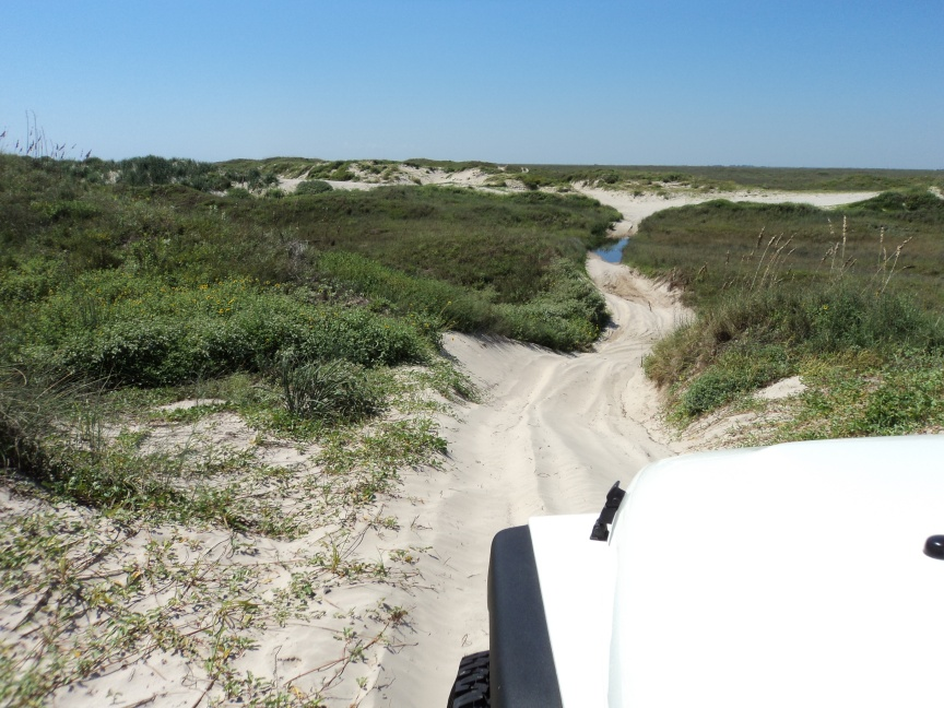 Click image for larger version  Name:Jeep Sand Trails.jpg Views:288 Size:224.8 KB ID:45467