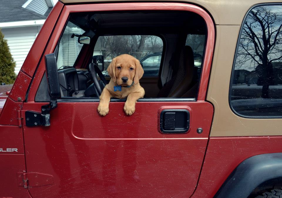 Click image for larger version  Name:jeep10wk.jpg Views:676 Size:96.3 KB ID:436897