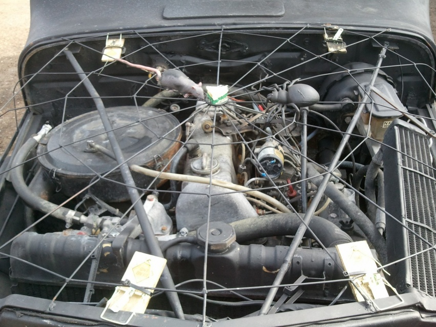 Click image for larger version  Name:JeepRatrod3.jpg Views:89 Size:235.4 KB ID:82495