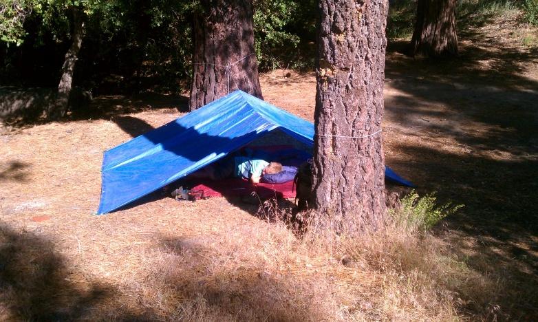 Click image for larger version  Name:Logan napping at Thomas Mtn.jpg Views:64 Size:223.2 KB ID:143820