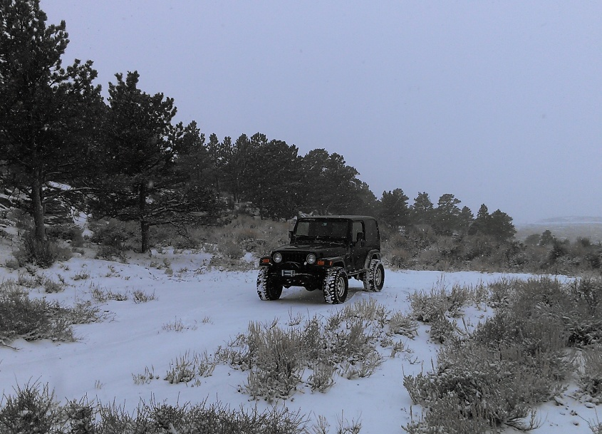 Click image for larger version  Name:snow1.jpg Views:174 Size:222.2 KB ID:186596