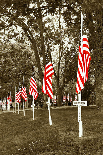 Click image for larger version  Name:VeteransDay.jpg Views:127 Size:179.9 KB ID:20120