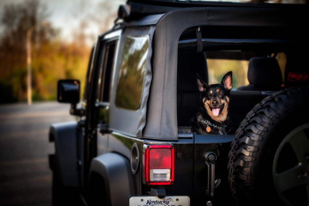 A Jeep Ride Is The Key To Happiness