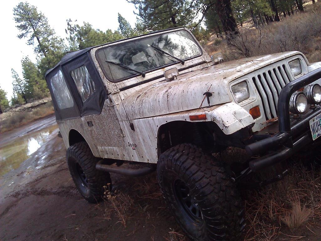 A Little Fun In The Mud