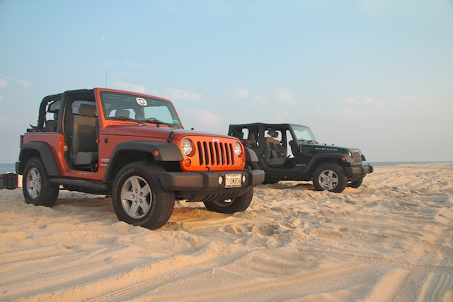 Assateague 2010