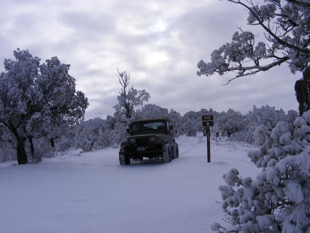 Christmas Day Around  Queen Nm