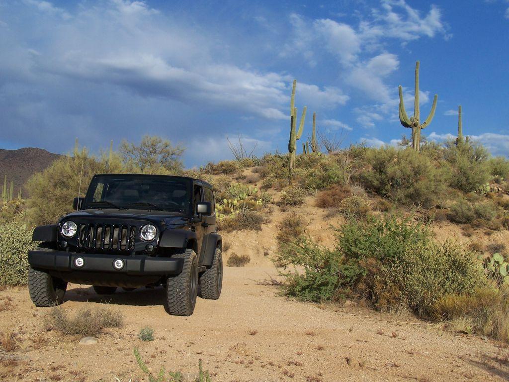 Four Peaks, Arizona (6)