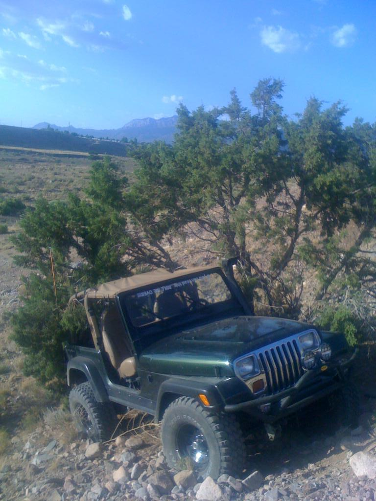 My Jeep Knocking Over A Tree On Steep Hill